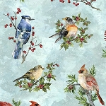 Winter Wonder S4707 41 Aqua Songbirds, Hoffman