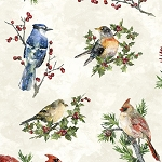 Winter Wonder S4707 531 Papyrus Songbirds, Hoffman