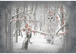 Call of the Wild S4722 126 Birch Owl Digital Panel, Hoffman