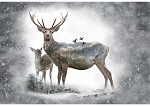 Call of the Wild S4723 112 Dawn Deer Digital Panel, Hoffman
