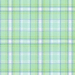 Mammoth Junior Flannel 19839 32 Mint Plaid Robert Kaufman Fabrics
