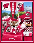 Wisconsin Tailgate Panel 1157 WI Sykel