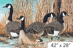 Naturescapes Canada Goose DP21824 42 Digital Panel Northcott