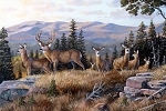 Naturescapes High Ridge Crossing DP21933 34 Deer Digital Panel, Northcott