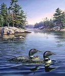 Naturescapes Loon Lake DP21935 44 Loons Digital Panel, Northcott