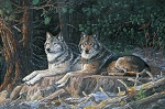 Naturescapes Resting Point DP21938 94 Wolves Digital Panel, Northcott