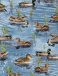 Nature Ducks C6406 Pond, Timeless Treasures