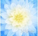 Dream Big Floral Digital Panel P4389 F7 French Blue Spectrum Print, Hoffman