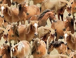 Greener Pastures 82491 221 Tan Packed Horses, Wilmington Prints