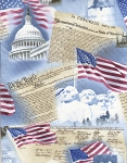 Timeless Treasures USA C9505 Sky Patriotism