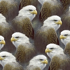 Majestic Eagles 24324 K Packed Eagles, Quilting Treasures