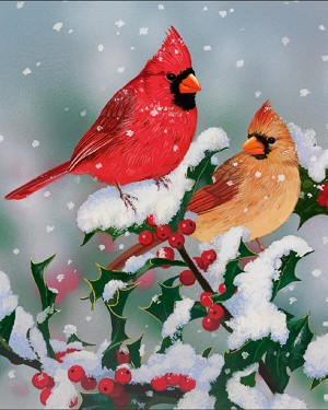 Winter Companions AL34560C1 Birds Digital Panel David Textiles