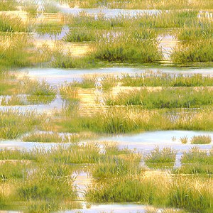 Duck Duck Goose 9120 457 Grass and Water Texture Golden Green, Wilmington Prints