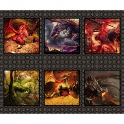 Dragons Digital A2 Multi Small Panel, In the Beginning